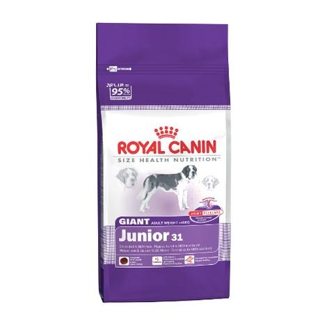 Giant Junior 31 Dog Food