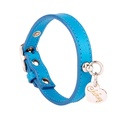 Light Blue and Silver Leather Collar
