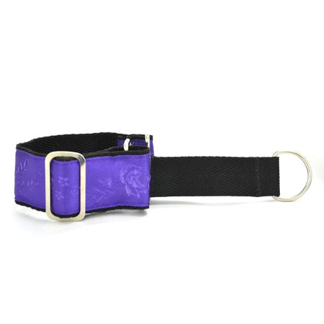 "St. Ives Sighthound Collar 1.5"" Width"