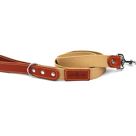 Tan Brown Cotton Webbing Dog Lead