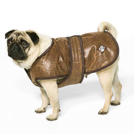 Waggles Fleece Dog Coat 3