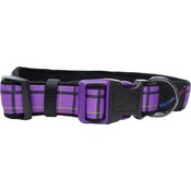 Hem & Boo - Check Padded Adjustable Dog Collar - Purple