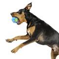 Orbee Tuff Orbee Ball - Blue/Green 4