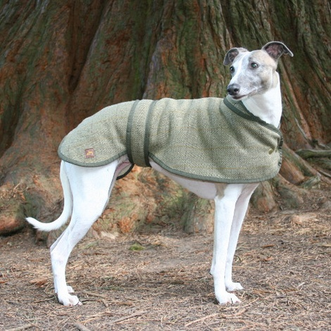 Tweed Whippet Coat 3