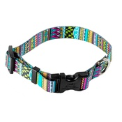 Yellow Dog - Festival Stripe Dog Collar