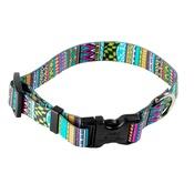 Yellow Dog - Festival Stripe Dog Collar