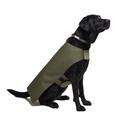 Pawditch Khaki Dog Coat 5