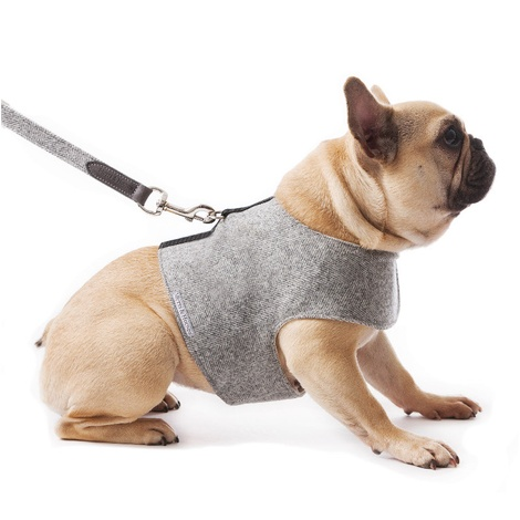 Stoneham Grey Tweed Dog Harness