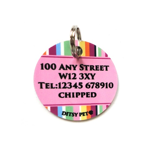 Padstow Pet ID Tag 2