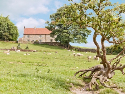 Warren Farmhouse, North Yorkshire, Kildale