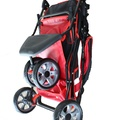 Buggy All Terrain Red/Black 2