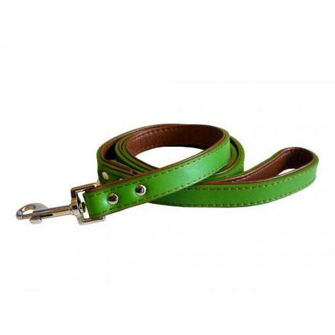 Fusion Lime Leather Dog Lead