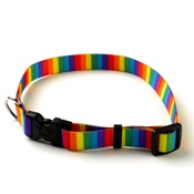 Yellow Dog - Rainbow Stripes Collar