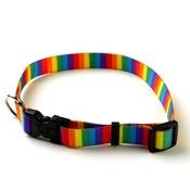 Yellow Dog - Rainbow Stripes Collar