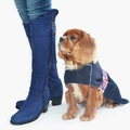 Liberty Tweed Dog Coat 2
