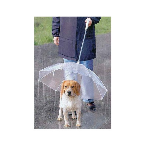MPF Plastic Transparent Dog Umbrella
