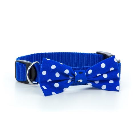 """Blue Polka Bowtie Dog Collar 1"""" Width"""