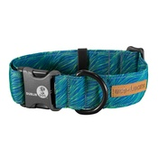 Dublin Dog - EcoLucks Dog Collar – Elements Sea Kelp