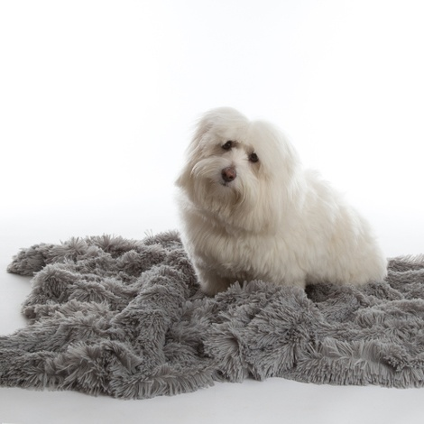 Shaggy Pet Blanket - Silver