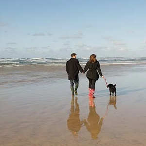 <strong>Cornwall</strong>: Find fabulous dog-friendly places on the coast.