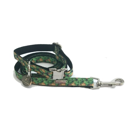 Collar and Lead Set - Alderley 2