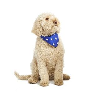 Blue Star Dog Bandana