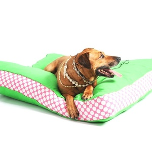 Two Tone Dog Bed - Green & Daisy Stripe