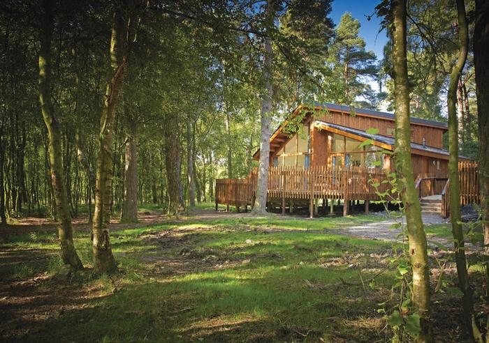 Silver Birch - Cropton Lodges, North Yorkshire 1