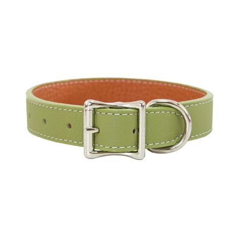 Tuscany Leather Dog Collar – Green