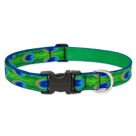 "3/4"" Width Tail Feathers Lupine Dog Collar"