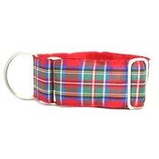"Let Sleeping Dogs Lie - Strathclyde Sighthound Collar 1.5"" Width"