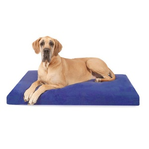 Foam Dog Bed - Bluebell