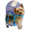 Blue Nylon Harness Set