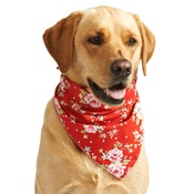 Pet Pooch Boutique - Red Vintage Primrose Dog Bandana
