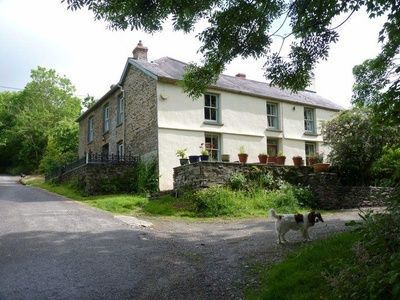 Holistic Retreat For You And Your Dog, Wales