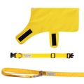 Pawditch Yellow Dog Collar, Lead & Coat Set