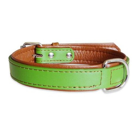 Lime Fusion Leather Dog Collar