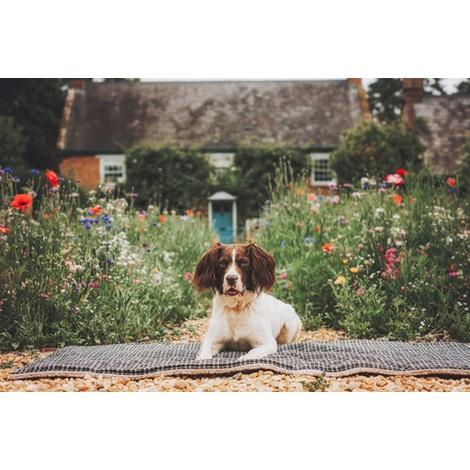 Dog Blanket - Fabric and sherpa wool - Ascot 5