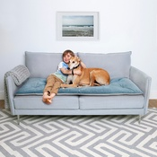 The Lounging Hound - Plush Velvet Sofa Topper - Airforce Blue