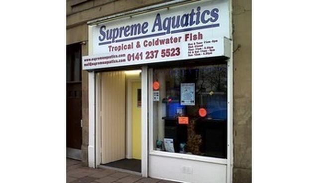 Supreme Aquatics