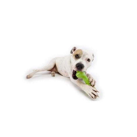 Orbee Tuff Bone - Green 2
