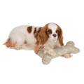 Sage Bone Linen Squeaky Bone Toy 2