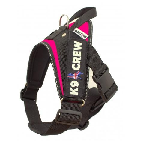 K9 Crew Harness Pink