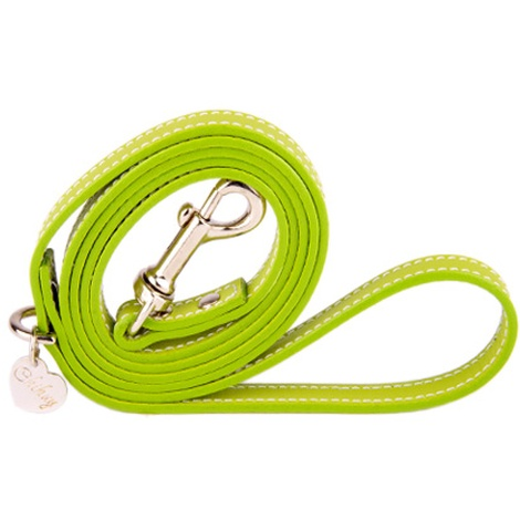Green and Silver Luxury Leather Lead