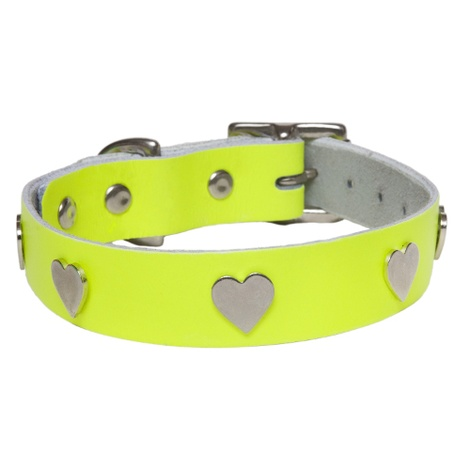 Galaxy Dog Collar - Yellow, Nickel Hearts