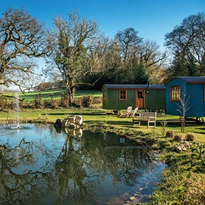 <strong>The Merry Harriers, Surrey</strong> Choose from Garden rooms, Inn rooms or luxury Shepherd's Huts for the ultimate dog-friendly getaway.