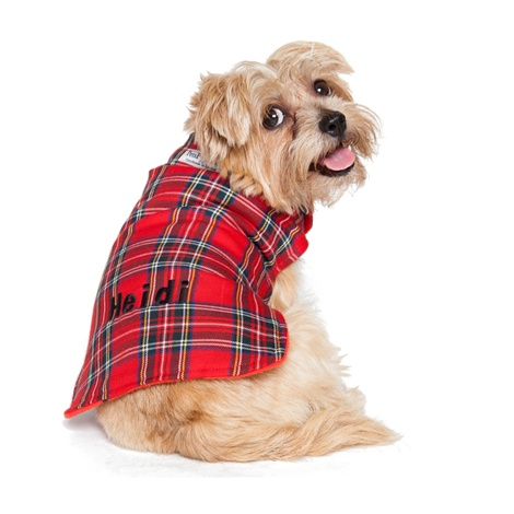Personalised Red Tartan Dog Coat