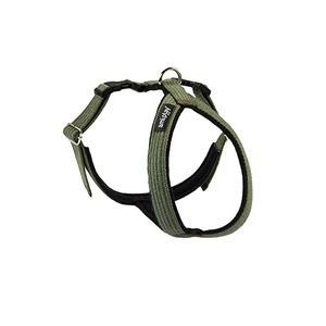 Ami Play Grand Harness - Green