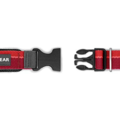 Roamer Running Lead - Red Currant 4