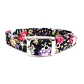 Nancy Buckle Dog Collar